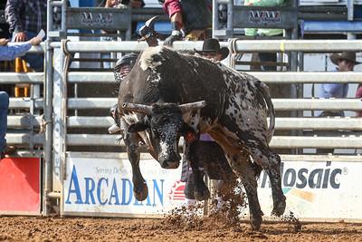20160313_Arcadia Rodeo-352
