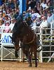 20160313_Arcadia Rodeo-11