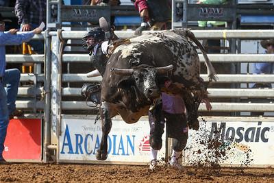 20160313_Arcadia Rodeo-353