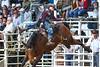 20160313_Arcadia Rodeo-8