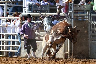 20160313_Arcadia Rodeo-338