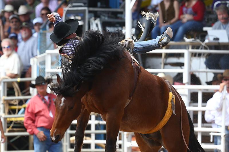 20160313_Arcadia Rodeo-19
