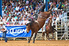 20160313_Arcadia Rodeo-9