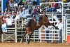 20160313_Arcadia Rodeo-7