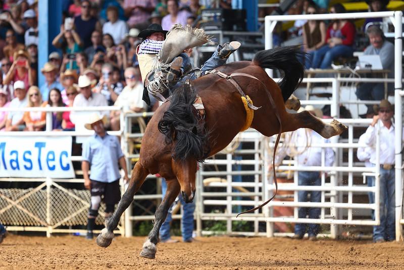 20160313_Arcadia Rodeo-20