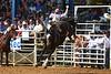 20160313_Arcadia Rodeo-40