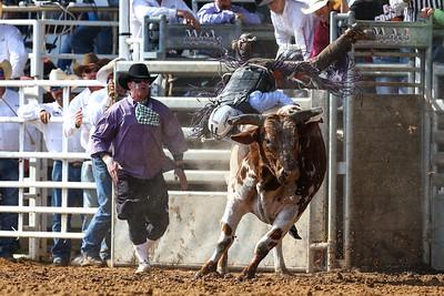 20160313_Arcadia Rodeo-337