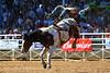 20170311_Arcadia Rodeo-150
