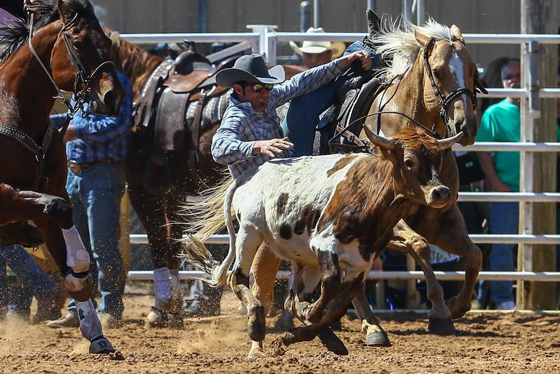 20170311_Arcadia Rodeo-198