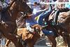 20170311_Arcadia Rodeo-266