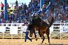 20170311_Arcadia Rodeo-185