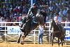 20170311_Arcadia Rodeo-354