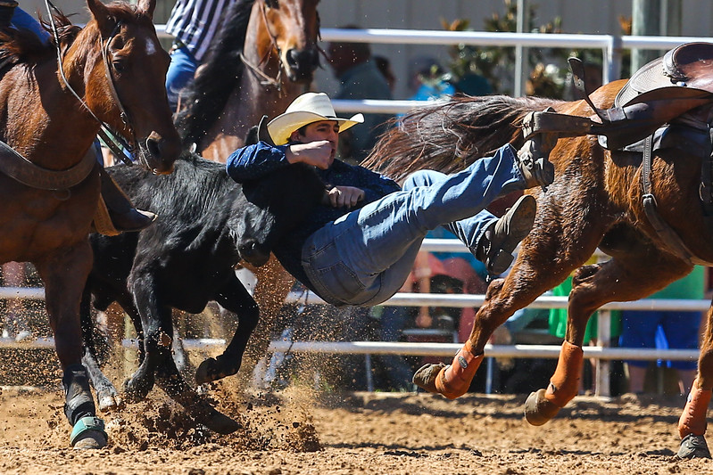20170311_Arcadia Rodeo-271