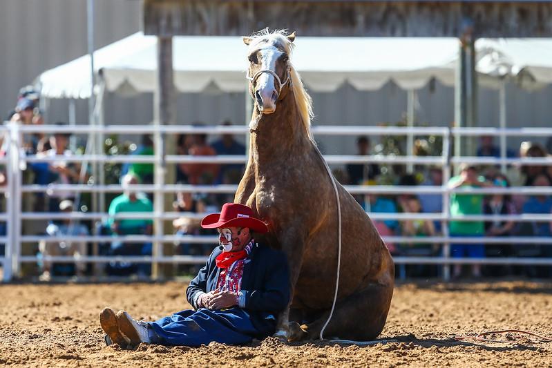 20170311_Arcadia Rodeo-393