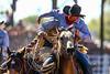 20170311_Arcadia Rodeo-381