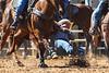 20170311_Arcadia Rodeo-256