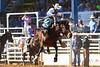 20170311_Arcadia Rodeo-350