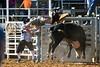 20170311_Arcadia Rodeo-878