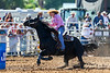 20170311_Arcadia Rodeo-580