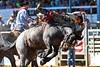 20170311_Arcadia Rodeo-365