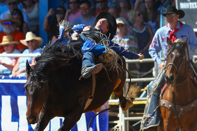 20170311_Arcadia Rodeo-171