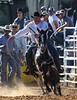 20170311_Arcadia Rodeo-484