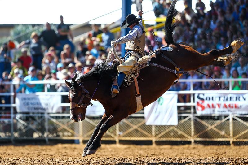 20170311_Arcadia Rodeo-377