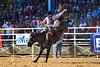 20170311_Arcadia Rodeo-359