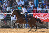 20170311_Arcadia Rodeo-517