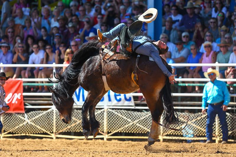 20170311_Arcadia Rodeo-161