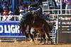20170311_Arcadia Rodeo-157