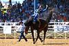 20170311_Arcadia Rodeo-184