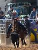 20170311_Arcadia Rodeo-460