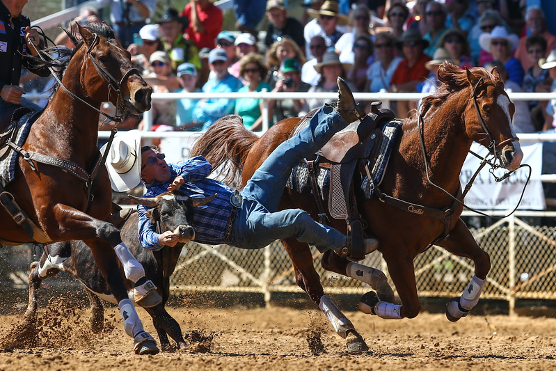 20170311_Arcadia Rodeo-195