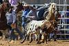 20170311_Arcadia Rodeo-197