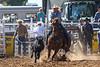 20170311_Arcadia Rodeo-464