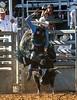20170311_Arcadia Rodeo-882