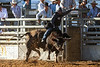 20170311_Arcadia Rodeo-893
