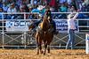 20170311_Arcadia Rodeo-693