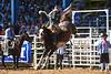 20170311_Arcadia Rodeo-312