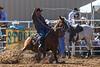 20170311_Arcadia Rodeo-407
