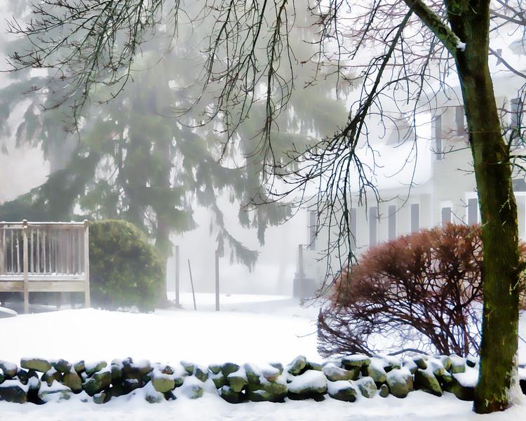 Snow fog III