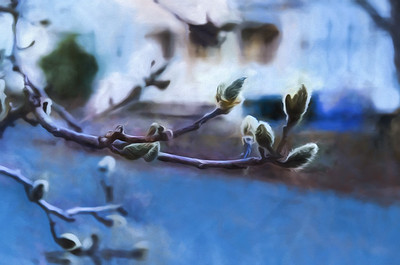 Tree buds, painted