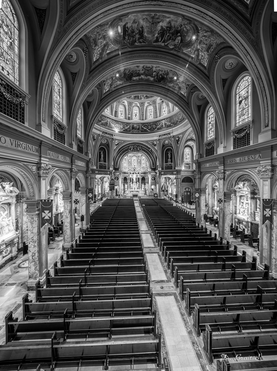 Our Lady of Victory Basilica, Nave