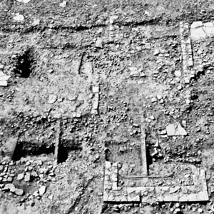 Figure 12. Binchester Roman Fort. Excavations along Dere Street, 2010.