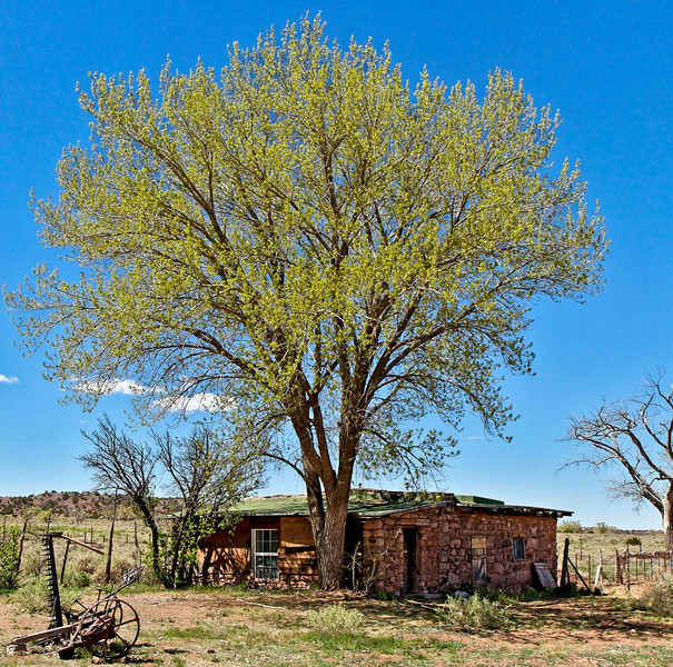 Hubbell Trading Post---possibly the bunkhouse.