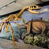 Dinosaur National Monument- Utah side