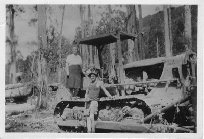 Early Noojee Timber Industry