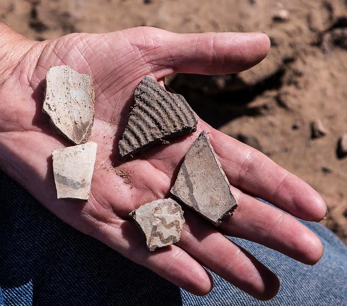 A variety of pottery sherds.