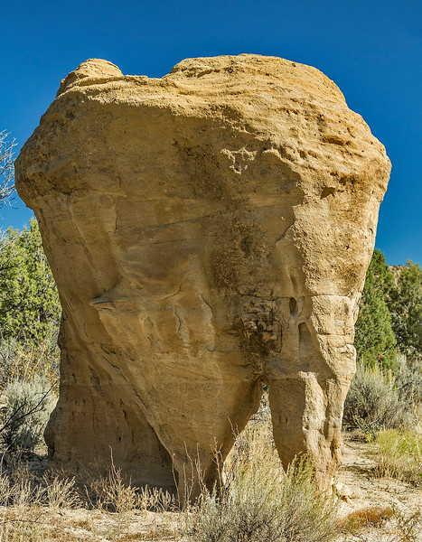 "Most likely we weren't the first people to dub this formation ""Elephant Rock."" I'd estimate it to be at least 10 feet tall."